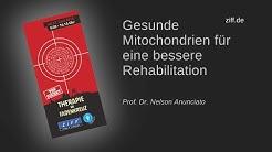 Gesunde Mitochondrien für eine bessere Rehabilitation - ZiFF Kongress 2018 mit Prof. Dr. Annunciato