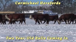 Carmichael Twos