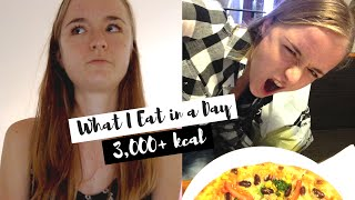 Diet Update | Increasing to a 3,000+ Kcal Meal Plan