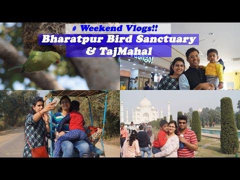 Weekend Trip || Delhi to Bharatpur Bird Sanctuary & Taj Mahal # Weekend Vlogs!!!
