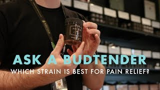 Which Strain Is Best For Pain Relief? | Ask A Budtender