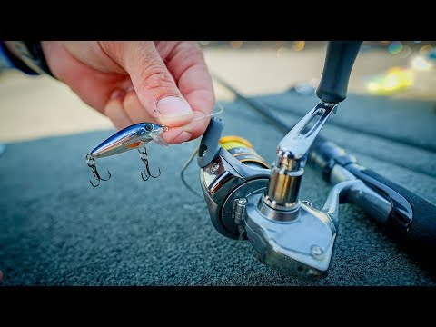 Fishing With Micro Lures To Stock Fish Tank