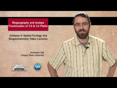 SPATIAL Video Lectures: C3 and C4 Plants