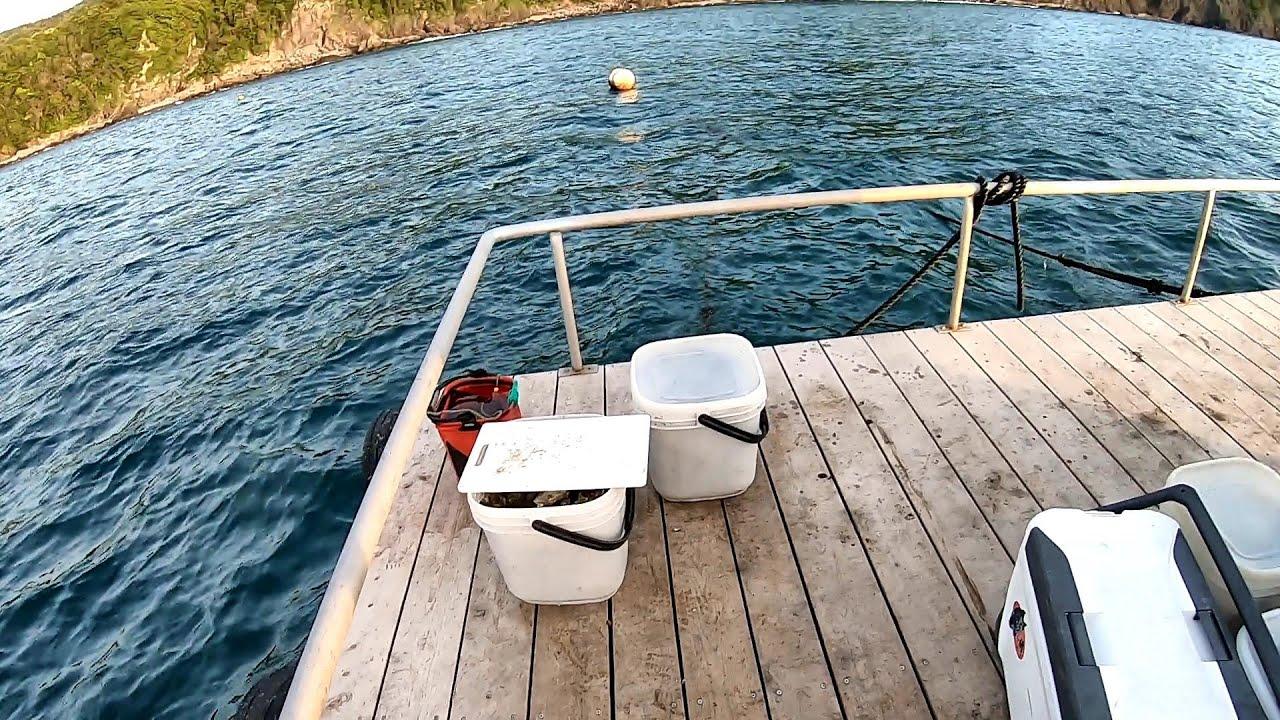 底物師が訪れる筏に渡ったらわずか数投で…
