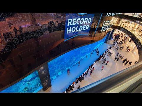 WORLDS LARGEST INDOOR AQUARIUM Dubai Aquarium #dubai #expo2020