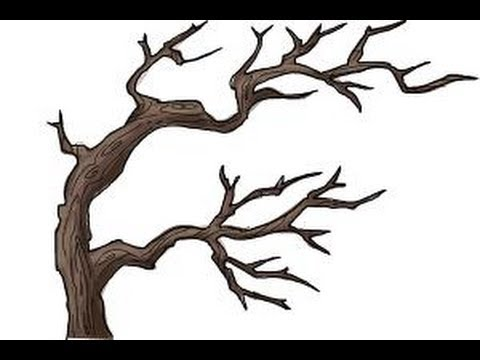 How to draw tree branches - YouTube