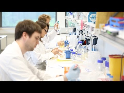 Synthetic Biology: Engineering a Bioplastic-Producing E. Coli Cell Factory - Group 1