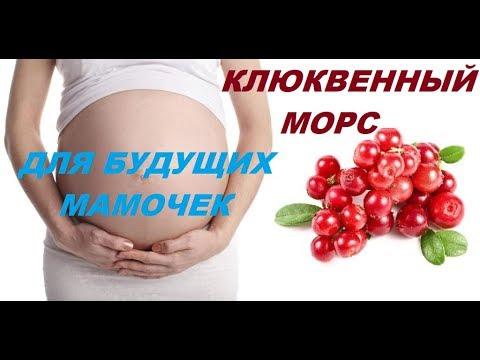 Клюква. Полезно. Для беременных. ПРАВИЛЬНЫЙ МОРС!