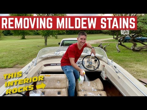 RESCUING The MILDEW Covered Interior On My $500 1966 SeaRay BOAT