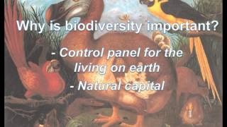 Marcus C Öhman - Planetary Boundaries