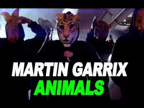 Martin Garrix - Animals (DJ Phoenix Loop Mix)