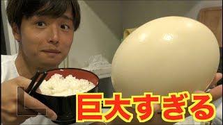 【ダチョウの卵!!】豪快に卵かけご飯(2合)にしたらお米がとまらない。