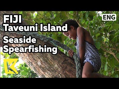 【K】Fiji Travel-Taveuni Island[피지 여행-타베우니]해변가 작살 낚시/Seaside Spearfishing/Rugby/Sea/Ocean/Bilibili