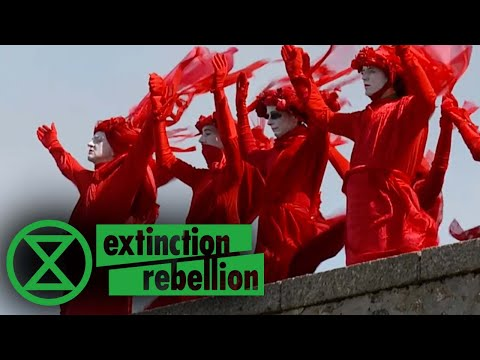 The Sea Is Rising And So Are We | Extinction Rebellion