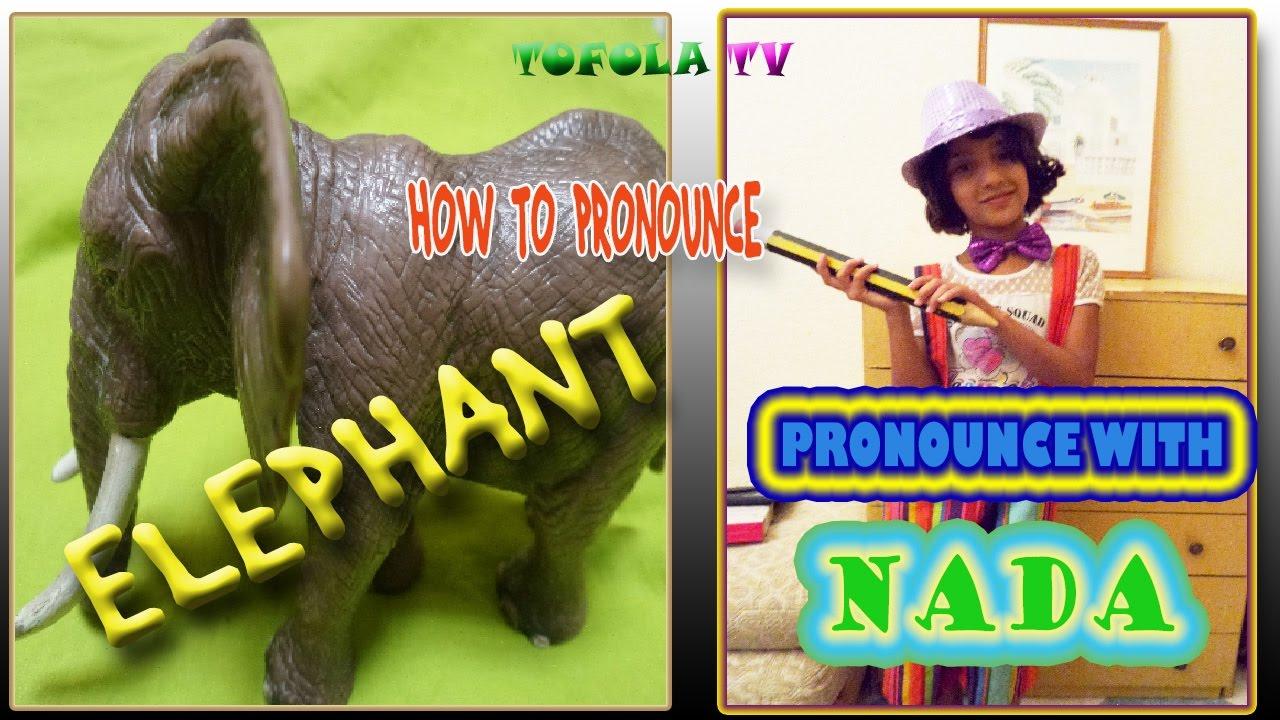 كيف تنطق كلمة فيل Elephant بالانجليزية Youtube