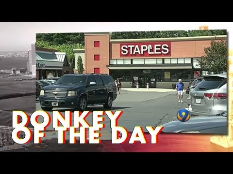 Staples   Donkey Of The Day
