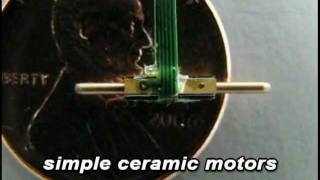 Squiggle Motor