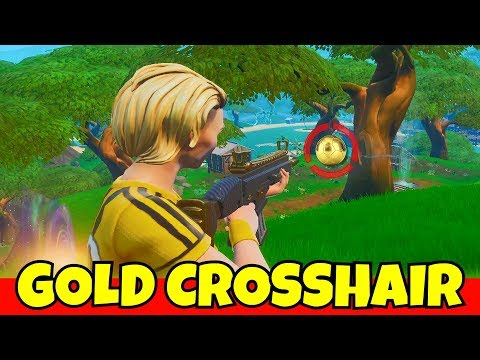 BEST FORTNITE TRICKSHOTS THAT HAVE EVER BEEN HIT | Doovi