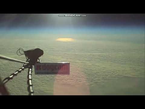DogCam High Altitude - HD