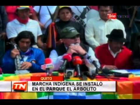 Marcha indígena se instaló en el parque El Arbolito