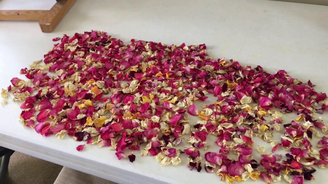 Potpourri Fai Da Te.Simple Diy Potpourri With Rose Petals