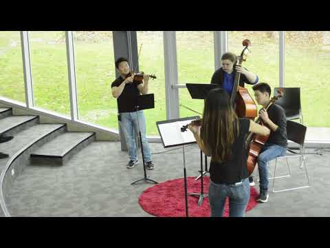 Why I Love Music  | Daniel Lee | TEDxMaumeeValleyCountryDaySchool