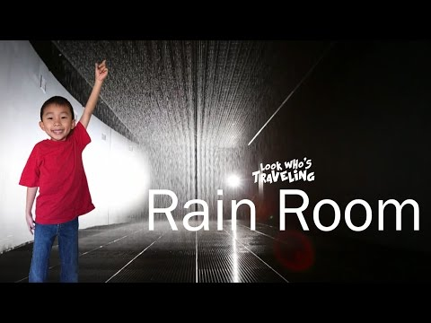 Visiting Rain Room at LACMA (Los Angeles Attractions):  Look Who's Traveling