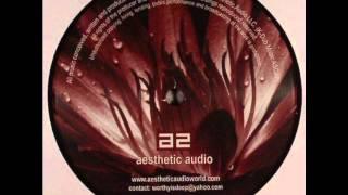 "Life Recorder - ""Inside Feelings"" - Aesthetic Audio (AES 015)"
