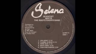 Download Scientist Meets The Roots Radics - Whip Them MP3 song and Music Video