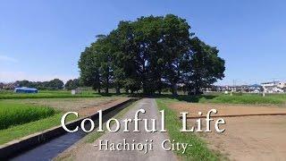 八王子市シティプロモーション動画「Colorful Life」