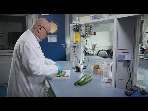"""European Commission funded project uses groundbreaking """"CRMs"""" to check food pesticides"""