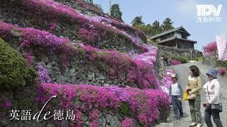 英語de徳島 #78高開の石積み