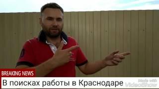 Какая работа ждёт переехавших в Краснодар
