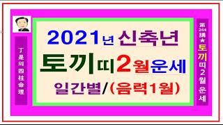 2021년 토끼띠 2월운세- 정시의 사주명리244강- 2021년 신축년 토끼띠 2월 운세입니다.