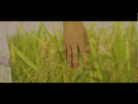 Love at First Sight | Kollywood | New Nepali Movie Song | Full HD New Nepali Song