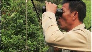 Bird Watching with Camp Guide, Somkid Chaisanl at Four Seasons Tented Camp  Golden Triangle