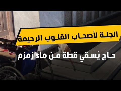 الجنة لأصحاب القلوب الرحيمة.. شاهد حاج يَسقي قطة من ماء زمزم