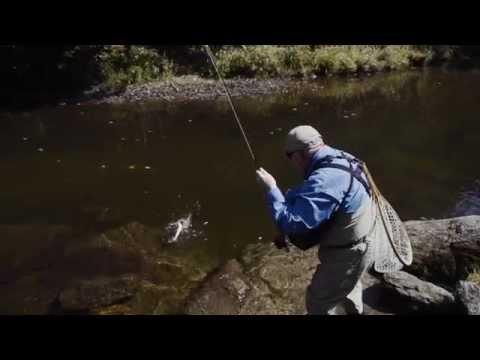 Project healing waters helps veterans through fly fishing for Healing waters fly fishing