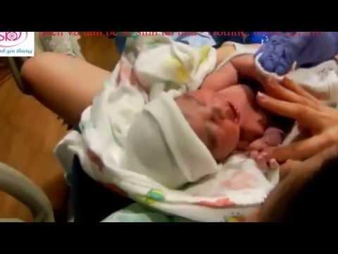 Cách một em bé ra đời