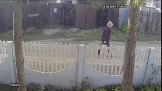 соседка алкашка орет в камеру  1 04 M 092016174649