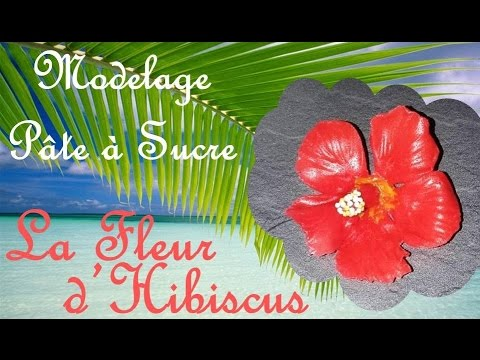 Fleur D Hibiscus Modelage Youtube