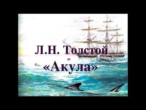 "Л.Толстой ""Акула"""