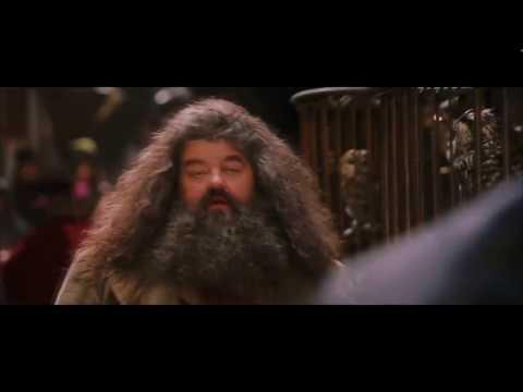 Harry Potter und ein Stein HD by Coldmirror
