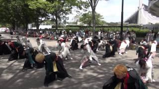 2014 原宿スーパーよさこい・NHK前ストリート.