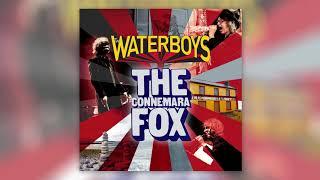 Play The Connemara Fox