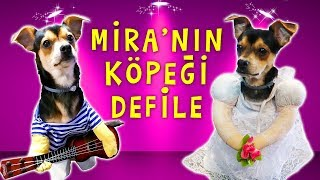 MİRA 'nın KÖPEĞİ DEFİLE YAPTI | Komik Köpek Videoları 1