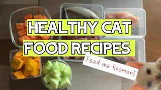 Healthy Homemade Cat Food Recipes