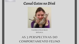 AS 3 PERSPECTIVAS DO COMPORTAMENTO FELINO