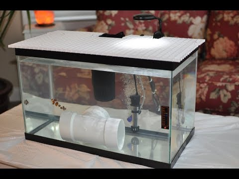 Quarantine Aquarium : Hospital Tank For Sick Fish And New Fish