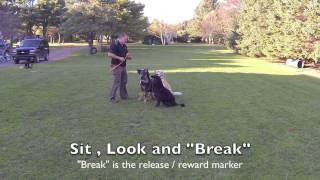 Upk9 Quick Tip. Dog Training And  Fetch